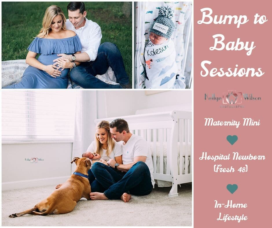 Bump to Baby Sessions